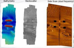 6205s backscatter scan image