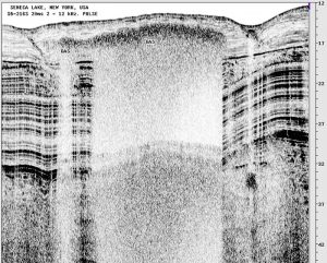 3200 216 sample image