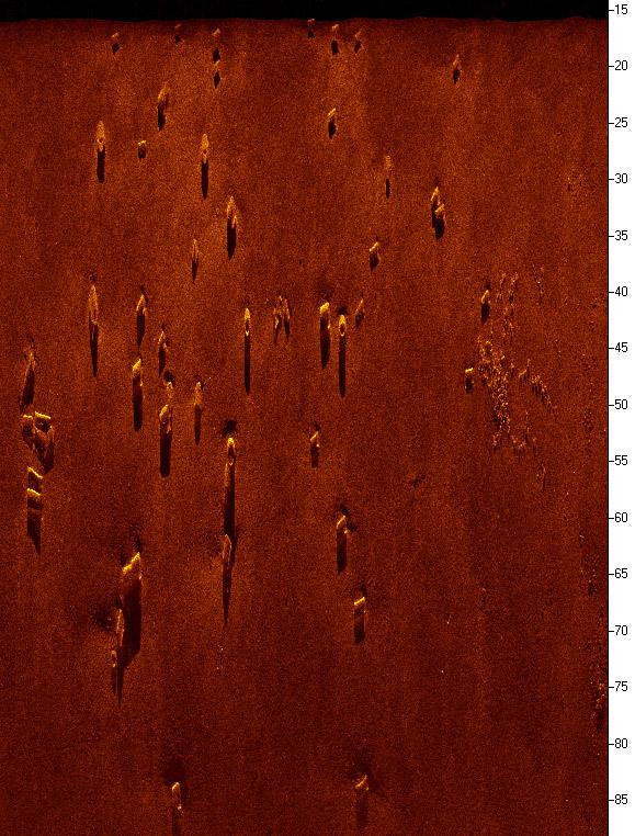 LMCS debris scan image2