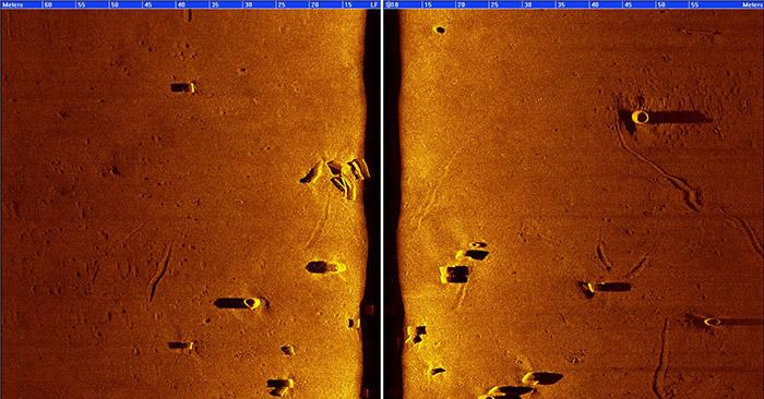 LMCS scan image